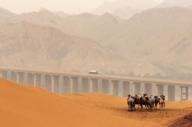 Сводя и разводя мосты. Центральная Азия в хитросплетении своих амбиций и внешних интересов