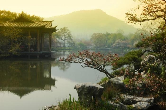 Китай улучшит охрану дикой фауны ифлоры в2019 году
