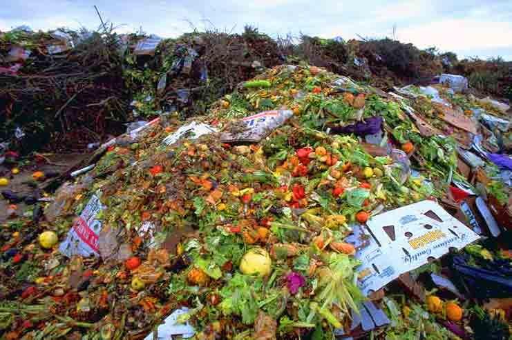 Китай перерабатывает сельскохозяйственные отходы в авиатопливо