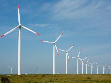 В 2020 Китай стал лидером по строительству мощностей зеленой энергетики