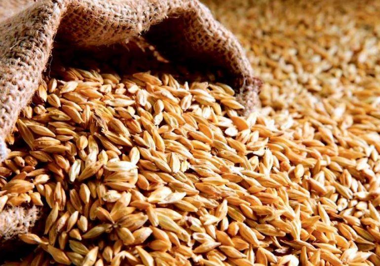 Украина достигла пика поставок зерна в Китай
