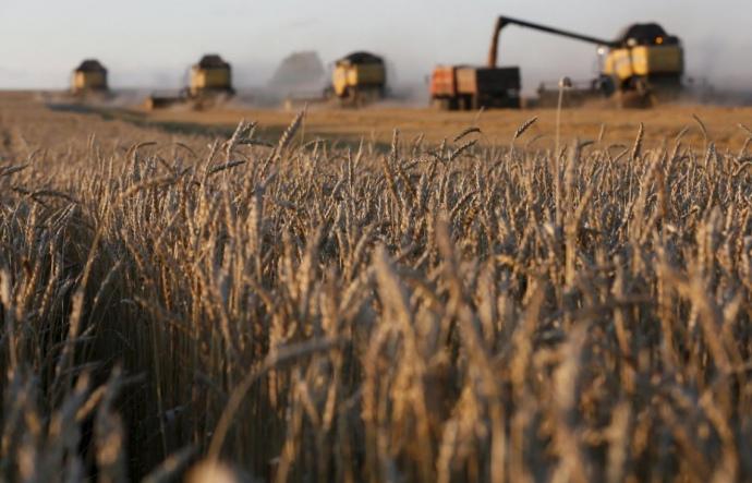 Украинский государственный зернотрейдер проиграл первое судебное дело китайской ССЕС на $4 млн