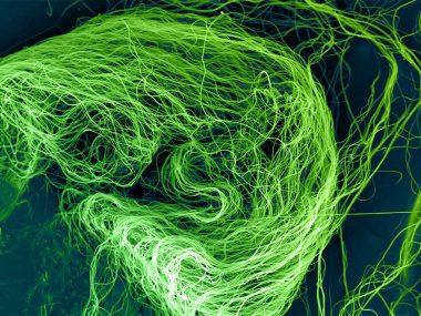 В Китае разработали новые нановолокнистые материалы