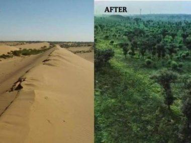 Пустыню в Китае за 60 лет превратили в оазис