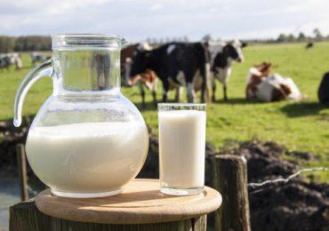 Коронавируса в экспортируемой из Украины в Китай сухой молочной сыворотке нет