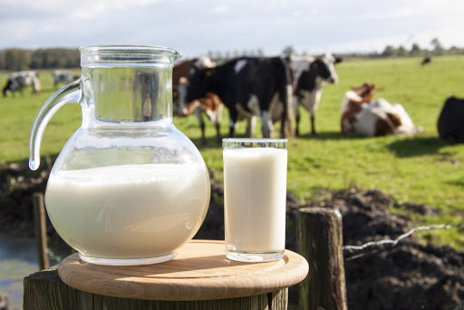 83% импорта сухого молока в Китай приходится на Новую Зеландию