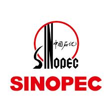 Sinopec заявила о разведке почти 200 млрд кубометров сланцевого газа