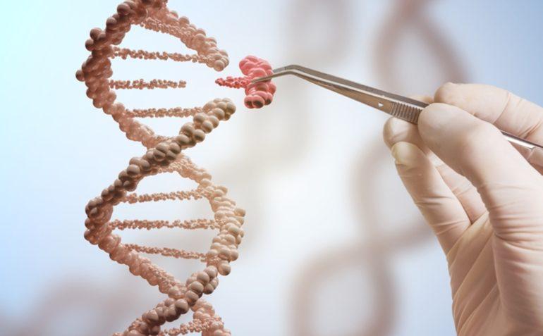 В Китае разработали генную терапию, которая может замедлить старение