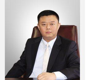 2. Ван Цзин (王靖, Wang Jing)