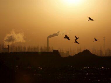 Выбросы CO2 в Китае выросли на 9% в первом квартале 2021 г.