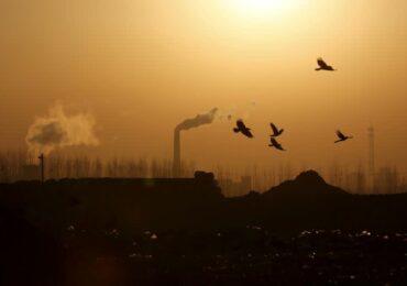 Китай запустит пилотную программу по оценке выбросов CO2 на новых промышленных проектах