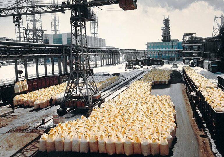 В России ожидают дефицит удобрений из Китая