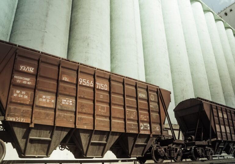 Китай объяснил, почему не принял зерно из Казахстана
